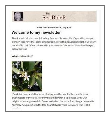 Sample of the Scribbler newsletter sent monthly to subscribers by Stella Budrikis.
